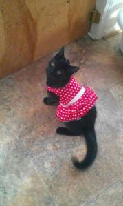 Otis being dressed by his biped sister