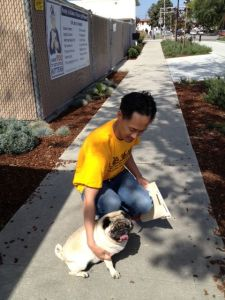 Wynonna is her way home with new dad and soon to meet her pug bro