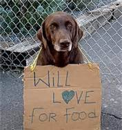 Will love for food