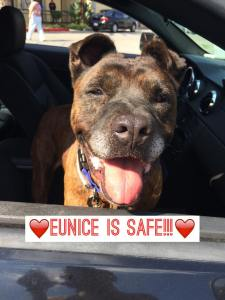 Eunice's freedom ride