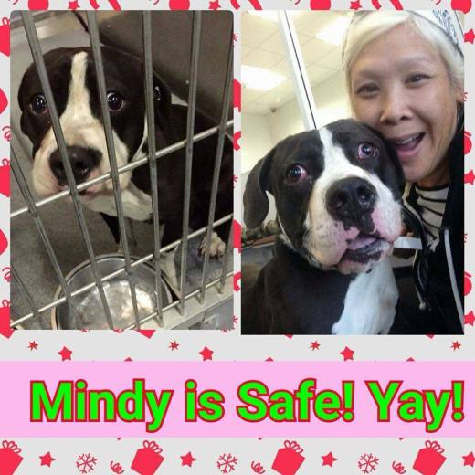 Mindy with new mom