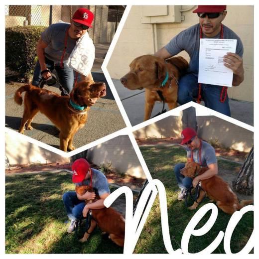 Neo's freedom photos