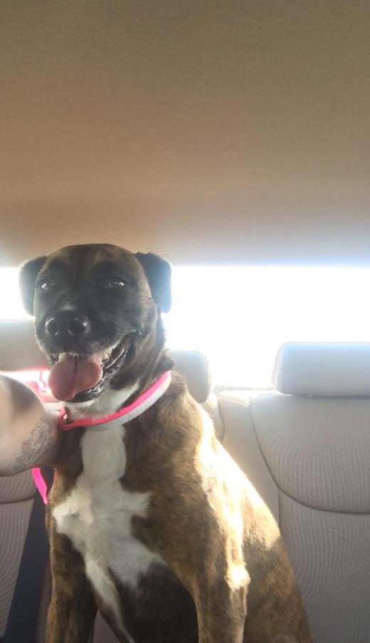 brandys-smiling-thank-you-on-her-freedom-ride