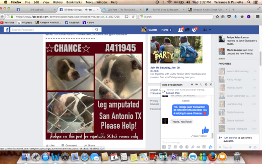 CHANCE HAS BEEN RESCUED Screen Shot 2017-01-04 at 1.32.32 PM.png