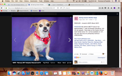 BETTY'S BEEN RESCUED Screen Shot 2017-03-07 at 9.32.12 AM