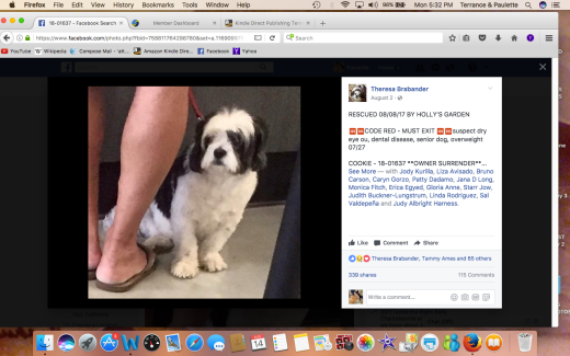 COOKIE 5 RESCUED Screen Shot 2017-08-14 at 5.32.09 PM