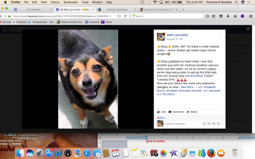 DAISY 3 RESCUED Screen Shot 2017-08-17 at 2.42.15 PM