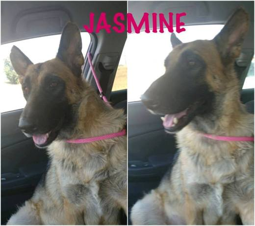 JASMINE FREEDOM PHOTO