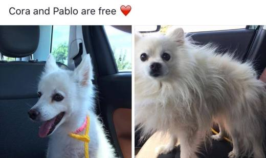 PABLO & CORA FREEDOM PHOTO