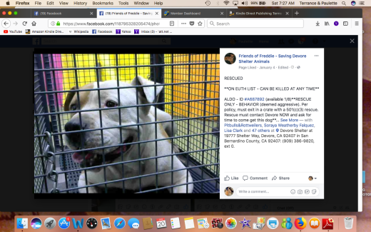 ALDO 3 RESCUED Screen Shot 2018-01-20 at 7.27.16 AM