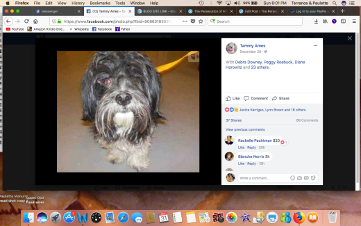CHARLIE 6 RESCUED Screen Shot 2017-12-31 at 6.01.54 PM