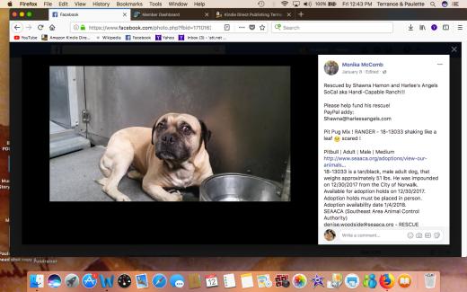 RANGR RESCUED Screen Shot 2018-01-12 at 12.43.18 PM