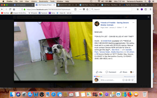 HUCK RESCUED Screen Shot 2018-02-26 at 7.37.20 AM