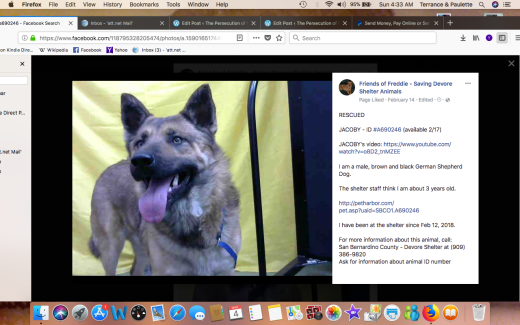 JACOBY 2 RESCUED Screen Shot 2018-03-04 at 4.33.42 AM