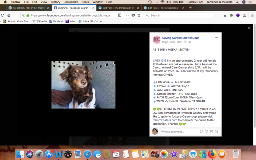 MEEKA HAS BEEN RESCUED Screen Shot 2018-03-10 at 9.20.55 AM