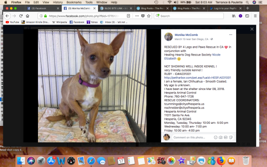 RUBY 2 RESCUED Screen Shot 2018-03-17 at 8.03.58 AM