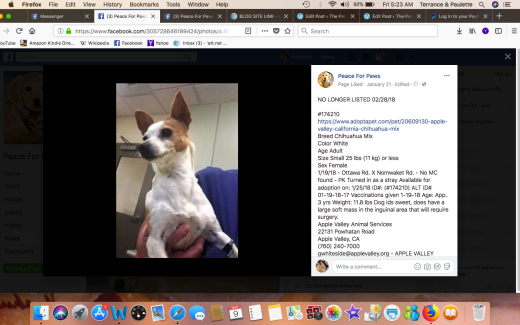 SUE #174210 RESCUED Screen Shot 2018-03-09 at 5.23.44 AM