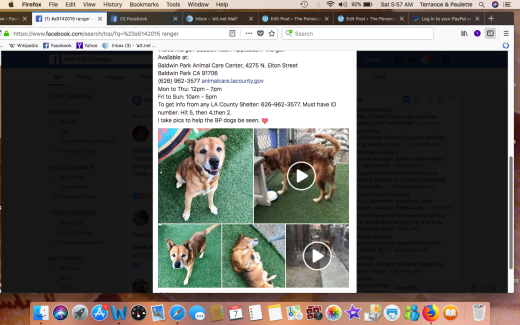 RANGER 2 SHELTER PHOTOS Screen Shot 2018-04-07 at 5.57.34 AM