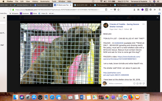 FRAZIER RESCUED Screen Shot 2018-05-30 at 5.12.00 PM