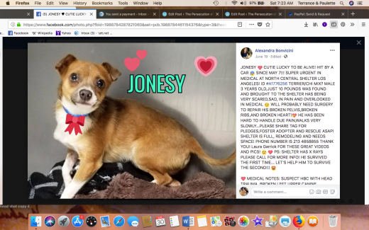 JONESY RESCUED Screen Shot 2018-06-30 at 7.23.39 AM