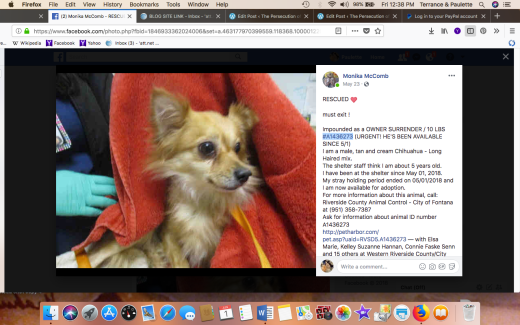 STEVIE RAY #A1436273 RESCUED Screen Shot 2018-06-01 at 12.38.56 PM