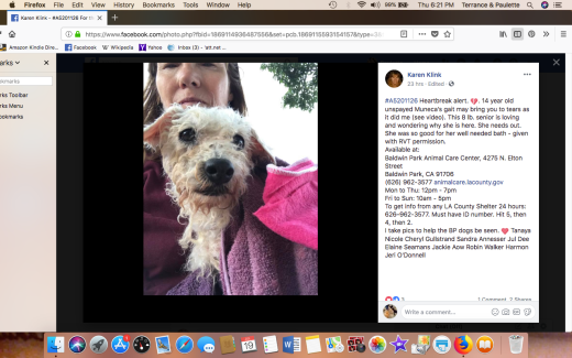 MUNECA RESCUED Screen Shot 2018-07-19 at 6.21.35 PM