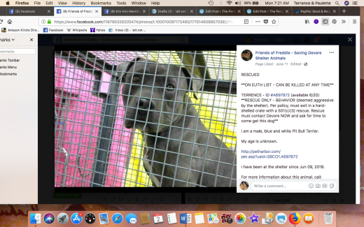 TERRENCE 2 RESCUED Screen Shot 2018-07-02 at 7.21.09 AM