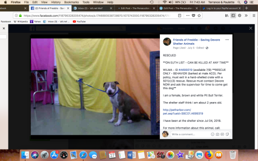 WILMA 3 RESCUE Screen Shot 2018-07-27 at 7.43.38 AM