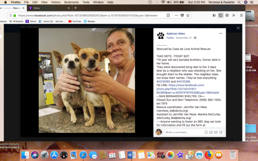 A518365 and A518366 bonded 15 yo brothers shelter info