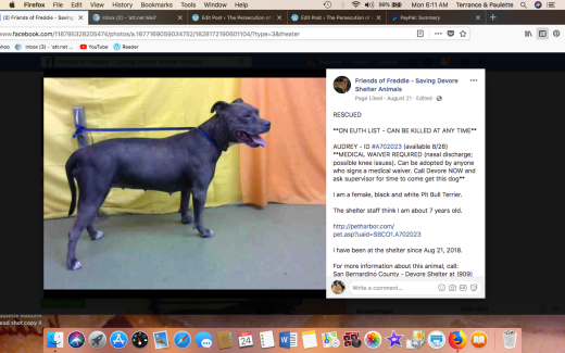 AUDREY 3 RESCUED Screen Shot 2018-09-24 at 6.11.45 AM