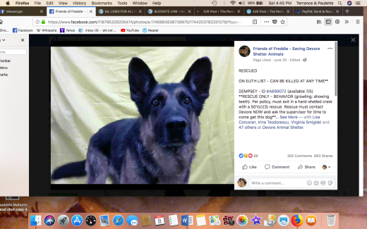 DEMPSEY RESCUED Screen Shot 2018-09-08 at 4.45.45 PM