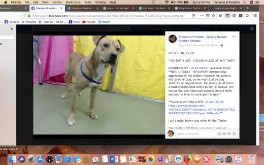 Doonesbury rescued 2018-12-16 at 6.03.16 PM