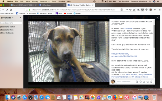 norman 3 rescued screen shot 2019-01-15 at 4.05.03 pm