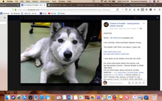 sofia 2 rescued