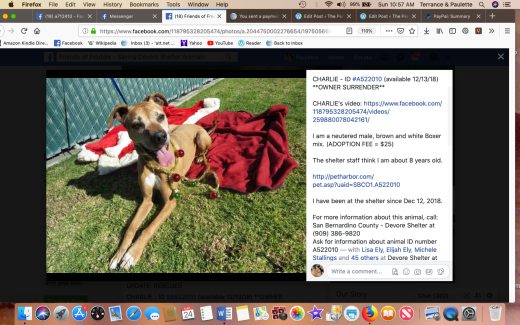 Charlie 9 rescued Screen Shot 2019-03-24 at 10.57.30 AM