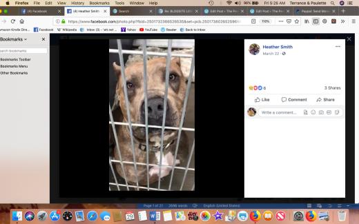 Drake 2 rescued Screen Shot 2019-03-29 at 5.26.41 AM