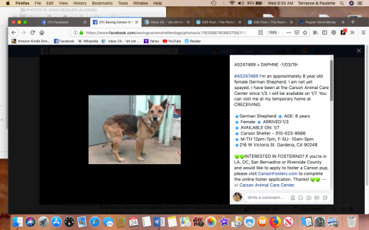 Daphne rescued Screen Shot 2019-04-24 at 8.55.56 AM