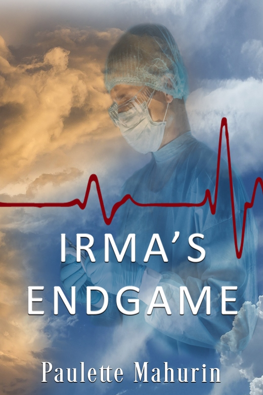 IRMA ENDGAME eBOOK front cover