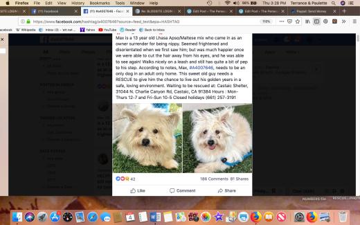 Max 7 rescued Screen Shot 2019-04-04 at 3.28.27 PM