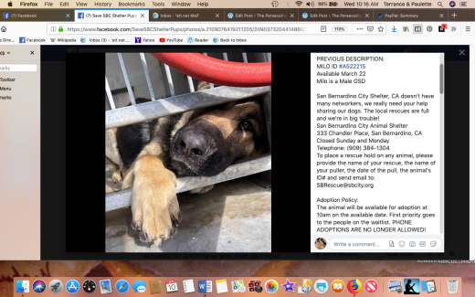 Milo rescued Screen Shot 2019-04-10 at 10.16.41 AM