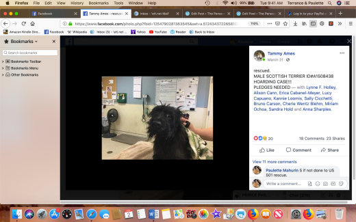 Prince Phillip A1508438 rescued Screen Shot 2019-04-02 at 9.41.29 AM