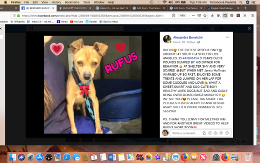 Rufus rescue Screen Shot 2019-04-02 at 7.39.03 AM