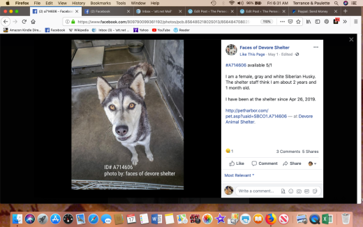 Cora 4 A714606 RESCUE Screen Shot 2019-05-17 at 6.31.54 AM
