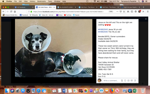 Jessa & Tito 3rescued Screen Shot 2019-05-19 at 4.57.38 PM