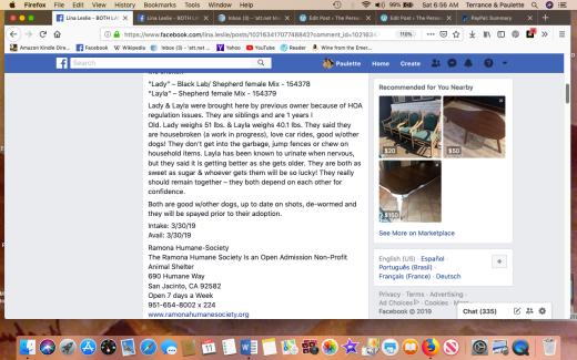 Lady 5 & Layla 4 shelter information Screen Shot 2019-05-11 at 6.56.49 AM