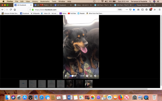 Louise & themma 2 freedom Screen Shot 2019-05-12 at 8.02.21 AM