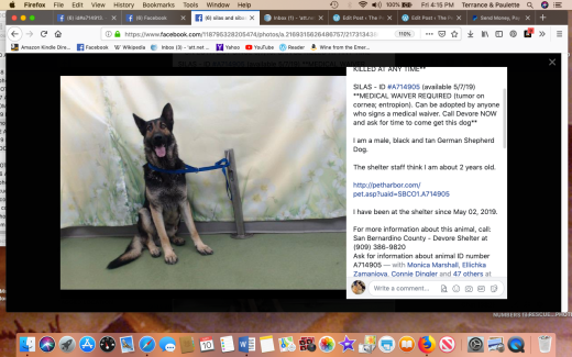 Silas rescued Screen Shot 2019-05-10 at 4.15.32 PM