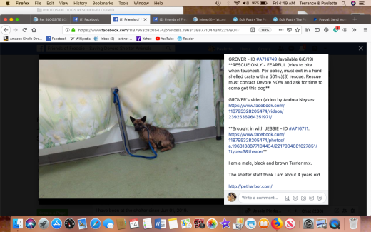 Grover 3 rescued Screen Shot 2019-06-14 at 4.49.52 AM
