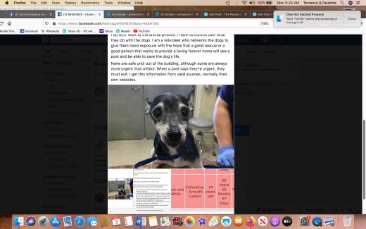 Fudge rescued Screen Shot 2020-02-03 at 9.24.43 AM