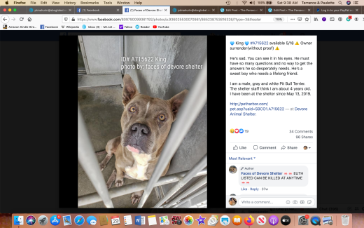King 3 rescued Screen Shot 2020-02-29 at 9.38.16 AM